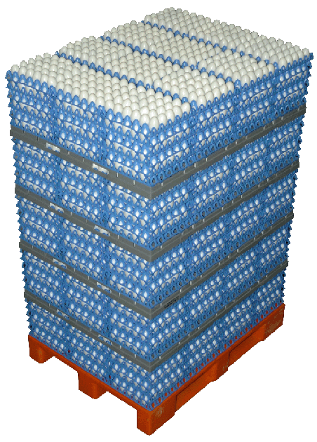 Eggs Cargo